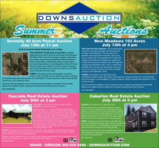 Summer Auctions